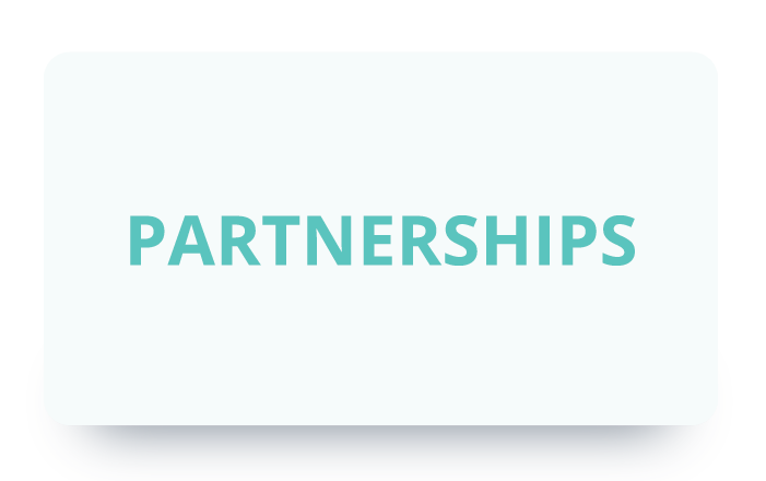 Rect-smallPartnerships